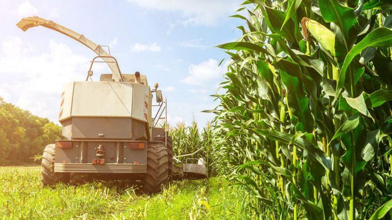 agrárium és élelmiszeripar