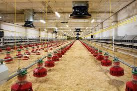 állattartó-telepek-járványvédelmi pályázat